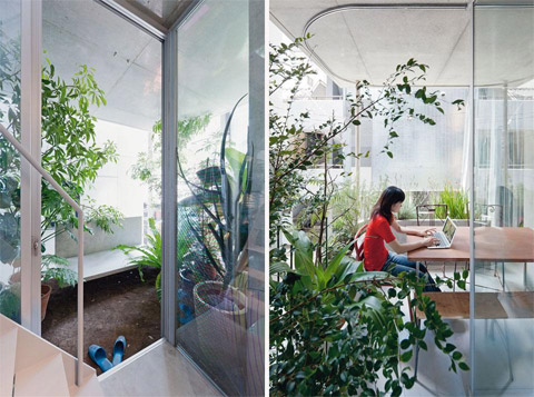 Jardim interno: natureza dentro de casa