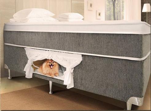 cama box com espaço para animal de estimação