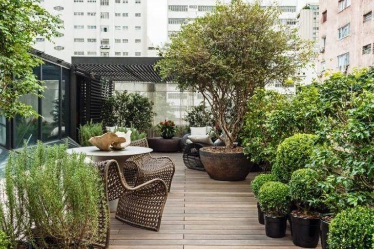 decoração jardim poda