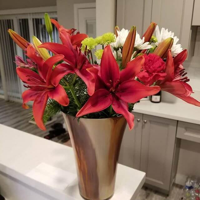 Flor de Lis: Significado, Simbologia e Como Cultivar