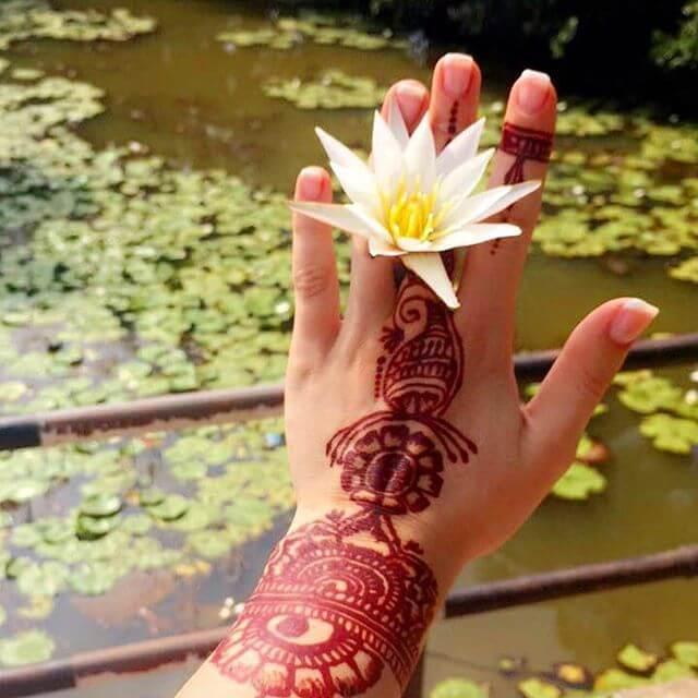 Flor de Lótus: Significado, Benefícios e Como Cultivar