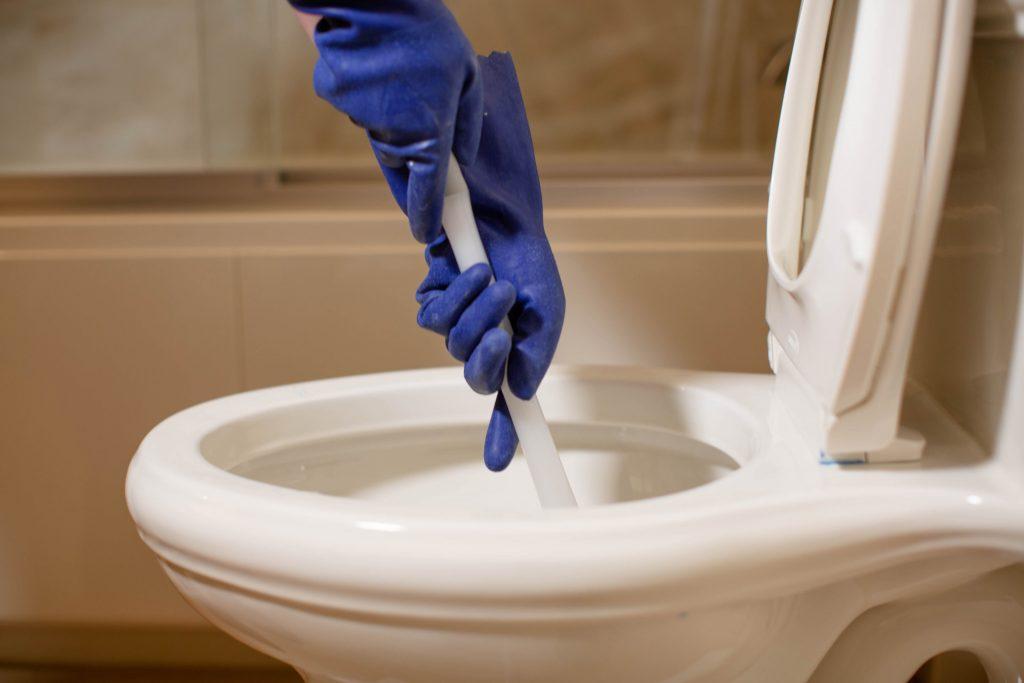 pessoa limpando vaso sanitário