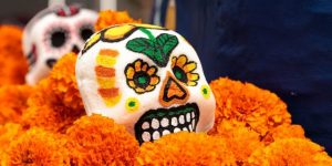 tagetes laranjas em celebração dia dos mortos no méxico