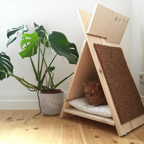 Arranhador: como fazer seu gato usar? Aprenda aqui!