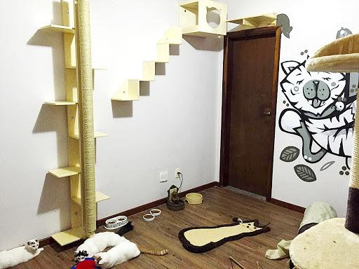 quarto hotel para gatos