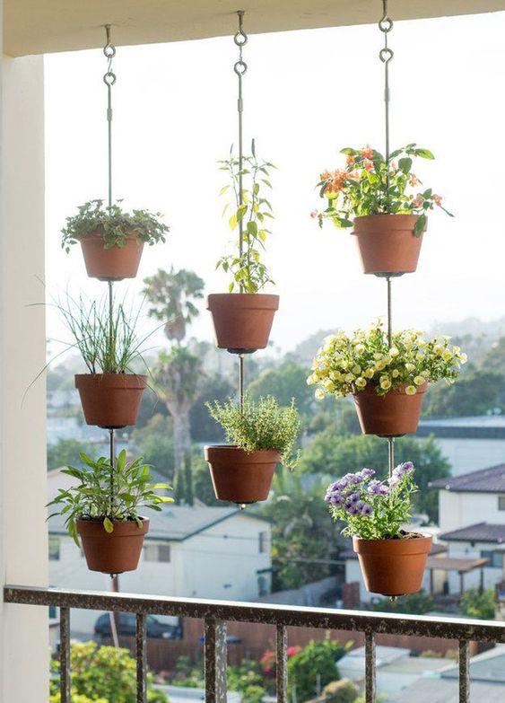 Plantas para jardim pequeno