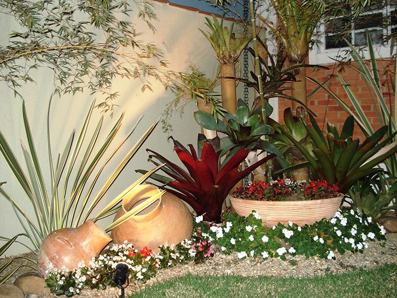 Como montar um jardim de inverno?