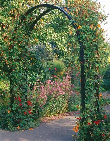 arco em jardim grande