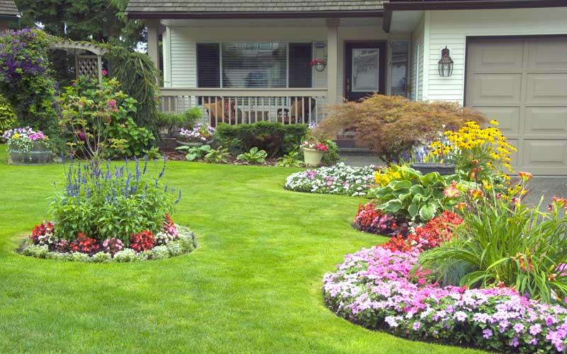 flores na decoração de jardim grande
