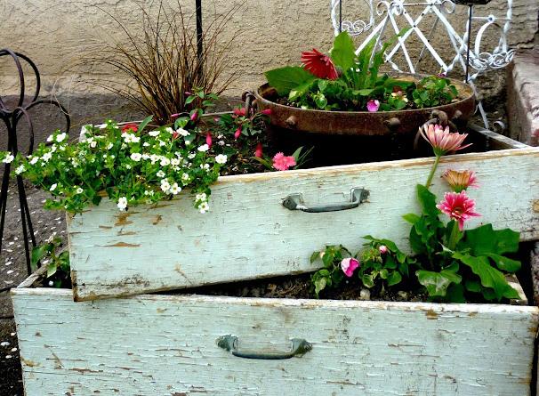 gavetas antigas de madeira em decoração de jardim
