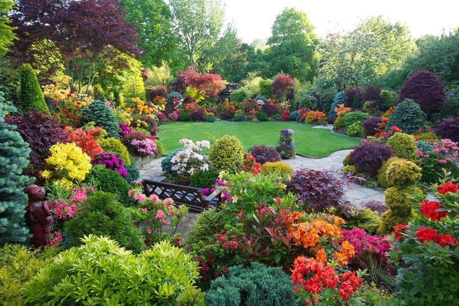 jardim grande cheio de flores