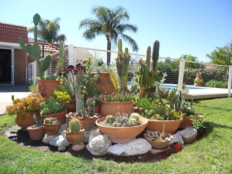 jardim grande estilo desértico