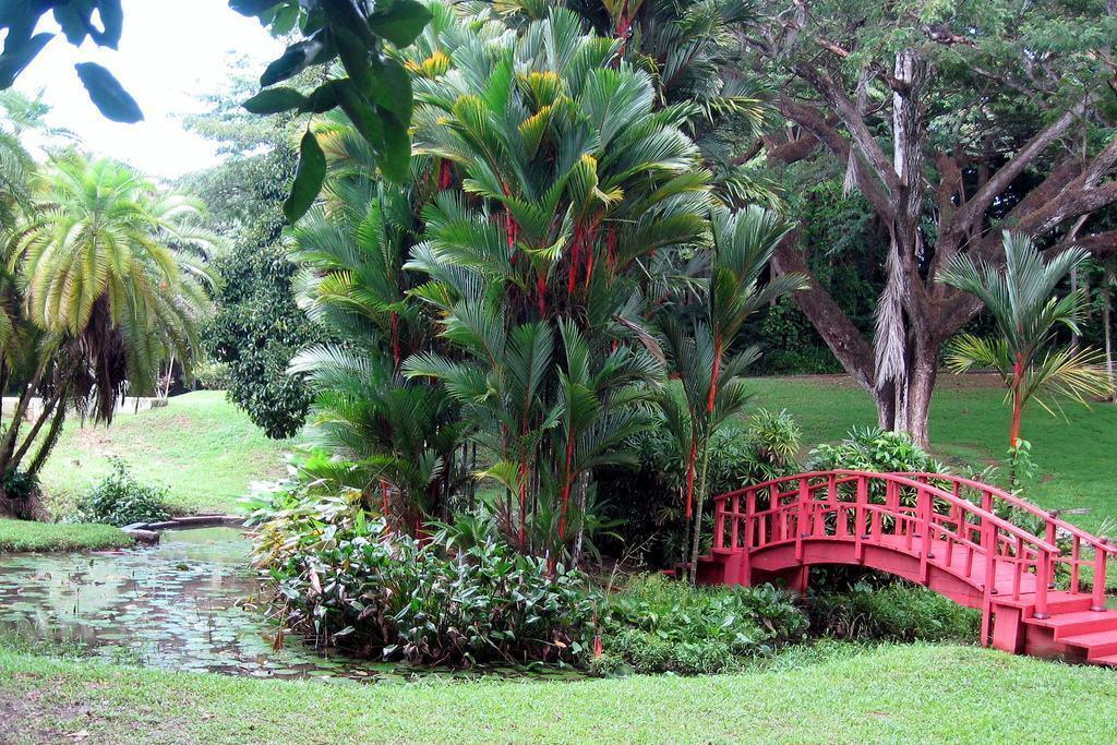 jardim grande estilo oriental