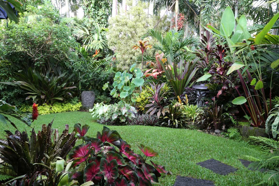 jardim grande tropical