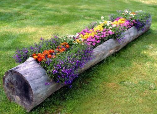 tronco de árvore para flores